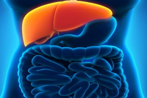 Fatty Liver Disease: Symptoms, Causes, And Treatment